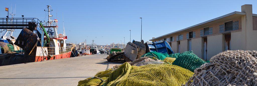 Productos de pescado y marisco para paella - Paella Land